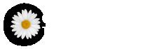 Cosmopolitan Title Agency, LLC Logo